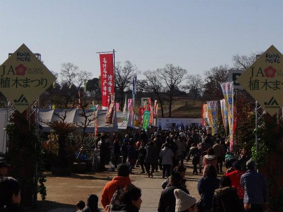JA植木祭り