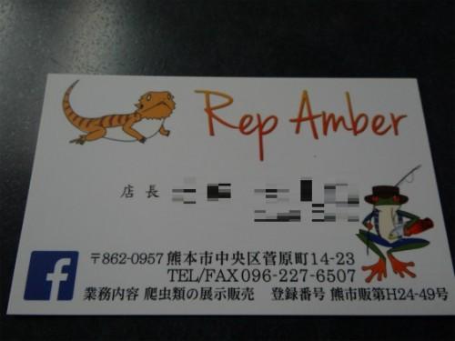 Rep Amber