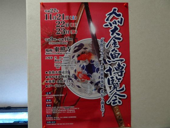 九州大金魚博覧会