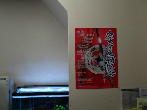 九州大金魚博覧会ポスター